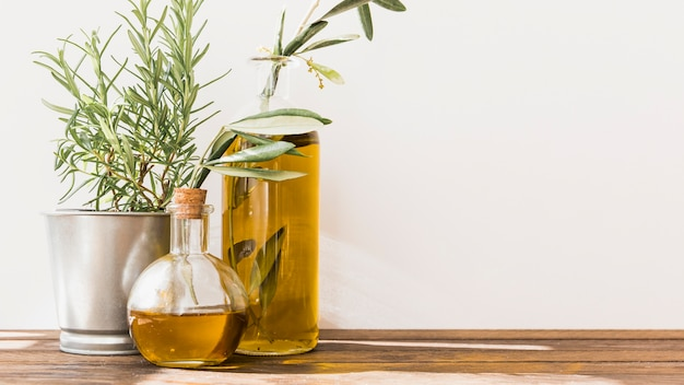 Potted rosemary with olive oil bottles on wooden table