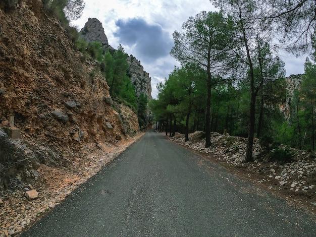 지역 초목 사이의 산길을 매우 천천히 운전하는 pov. 흐린 날 스페인 네 피오의 도로에있는 산을 자동차 한 대가 주행합니다.