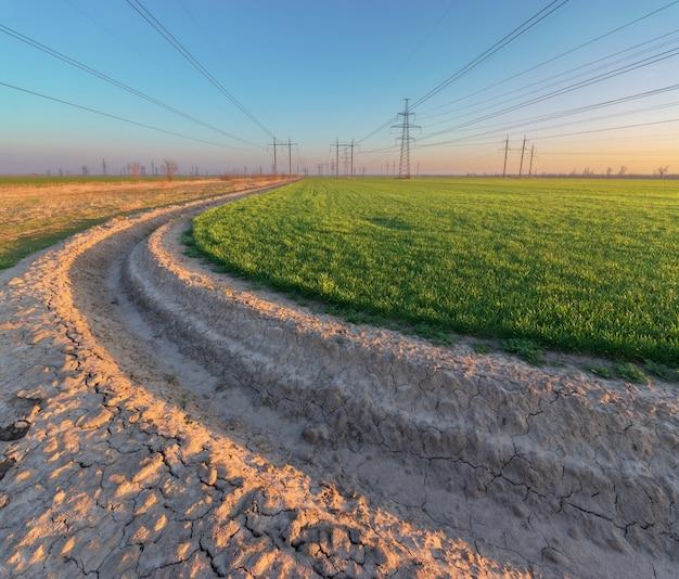 Линия электропередачи на поле / время заката промышленных опор