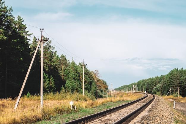 鉄道沿いの電力線。日光の下でレールに沿ってワイヤーをもつ極。針葉樹林近くの電柱とコピースペース。日当たりの良い鉄道の風景です。