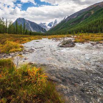 Мощная горная река стекает с ледника. красивый альпийский пейзаж с лазурной водой в быстрой реке. сила величественной природы высокогорья. горный алтай.