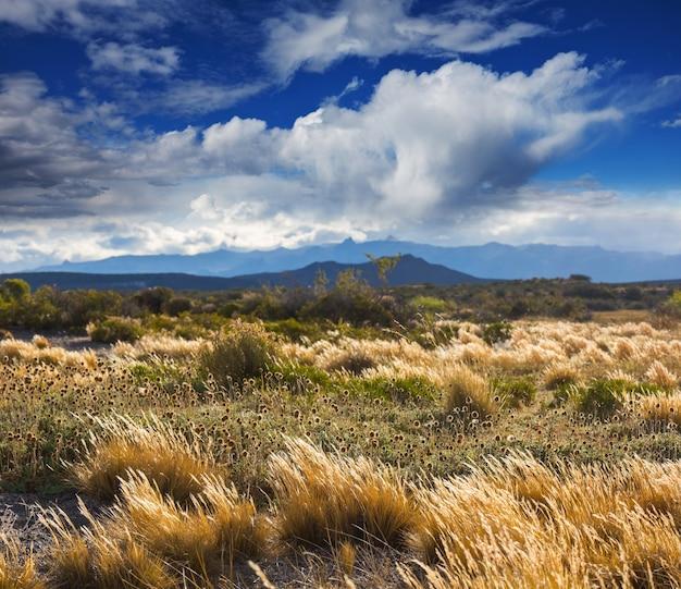アメリカ合衆国、ユタ州の大草原の風景