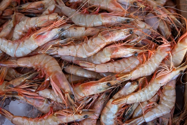 Prawns on market counter