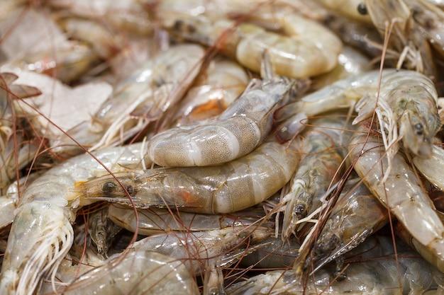 魚市場で、氷の上にエビ、新鮮な生のエビを丸ごと冷やして。