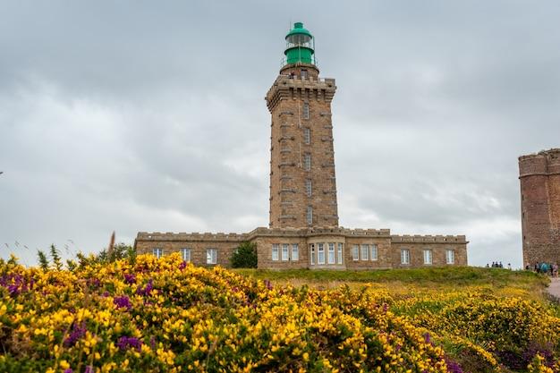 Драгоценные цветы летом в phare du cap frehel, это морской маяк в кот-д'армор (франция). на вершине мыса фрехеля