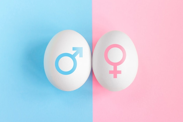 Pregnancy test. concept boy or girl. symbols of man and woman. gender affiliation concept