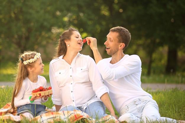 임신 어머니, 해피 아버지와 딸이 공원에서 피크닉에