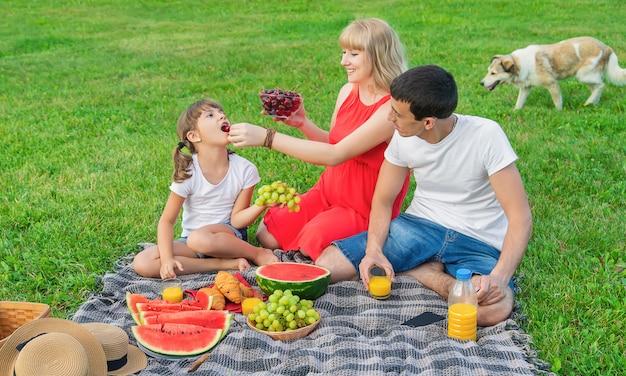 ピクニックに妊娠中の女性
