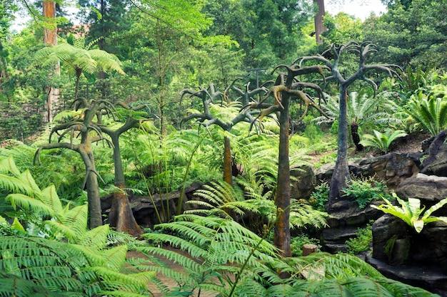 シンガポール植物園の風光明媚な石の木がある先史時代の風景