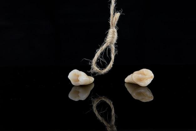 黒の背景に糸で根を除去した後の小臼歯と犬歯