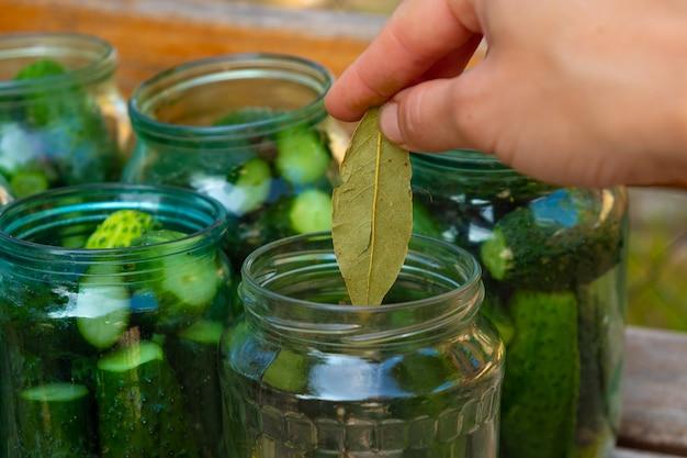 冬のきゅうりの缶詰の準備、女性は瓶のクローズアップに材料を配置します。
