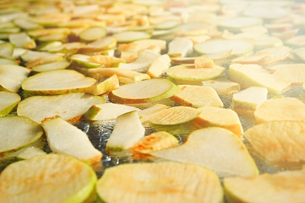 Preparations for winter from various fruits assorted apple and pear chips  healthy vegan snack