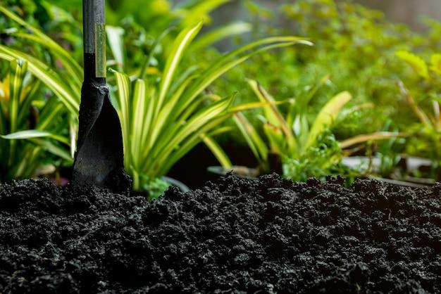 나무를 심기 위해 흙을 준비하십시오.