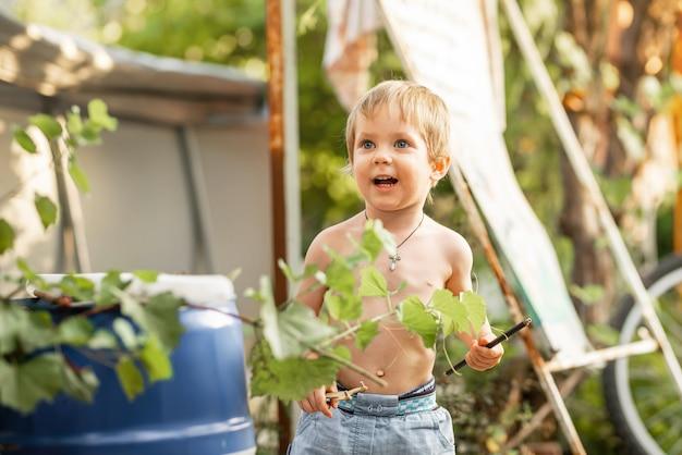 裏庭で遊ぶ面白い小さな男の子を楽しんでいる未就学児の子供