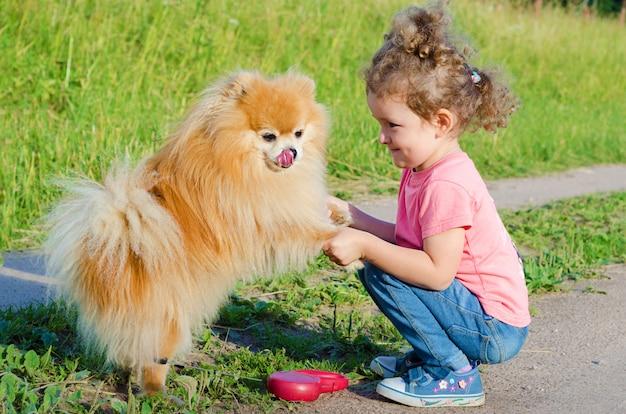 미 취학 아이 소녀 훈련, 야외에서 강아지와 함께 연주. 스피츠 순종을 가르치는 행복한 아기. 애완 동물과 함께 걷는 아이.