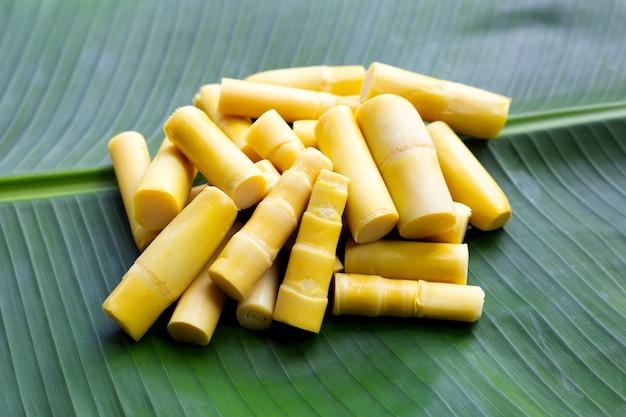 Preserved bamboo shoot on banana leaf