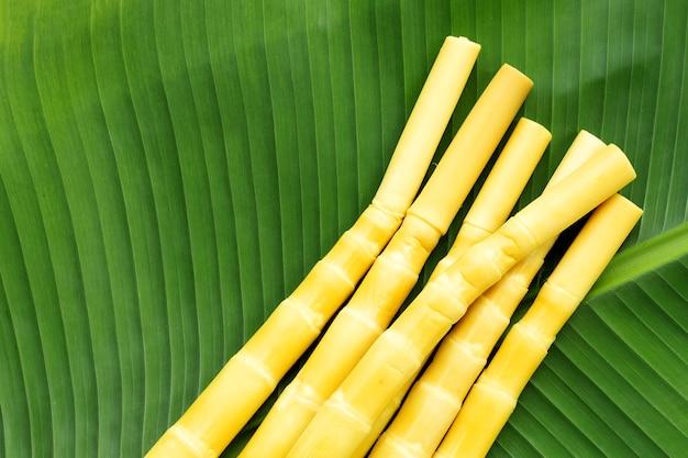 バナナの葉に保存されたタケノコ Premium写真