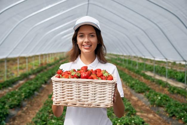 温室のイチゴのバスケットとかなりブルネット