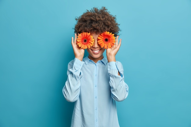 Pretty cheerful woman with curly hair covers eyes holds orange gerberas dressed in stylish shirt isolated over blue wall. positive female florist going to make decor or bouquet for special event