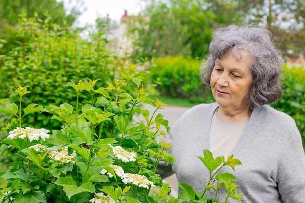 꽃이 만발한 나무 사이에서 공원을 산책하는 퇴직 연령의 예쁜 할머니