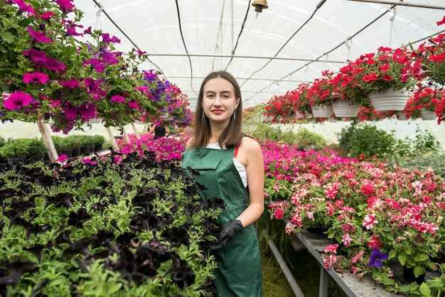 Pretty female nursery working with  flowers in the beautiful bright  greenhouse. springtime