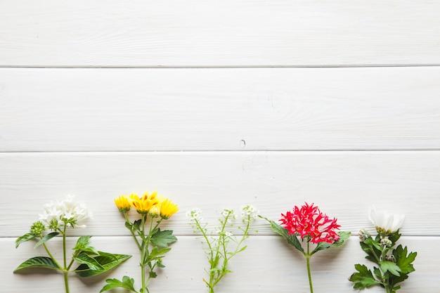 Bei fiori sul ripiano del tavolo in legno Foto Gratuite