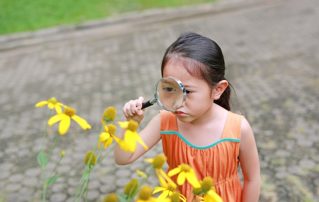 Pretty little asian child girl with magnifying glass looks at flower in summer park.