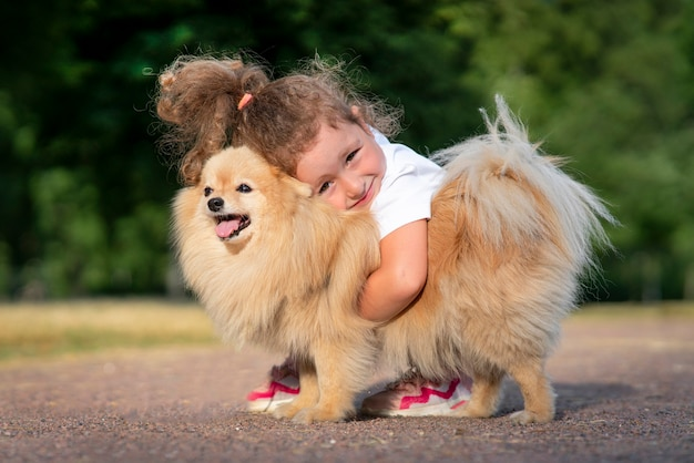 かわいい女の子の子供が抱き締めて、彼女のかわいい小さな友達ポメラニアンスピッツの子犬、公園で晴れた夏の日に犬を抱いている美しい子供と一緒に歩いています。子供たちは動物、友情の概念が大好きです。