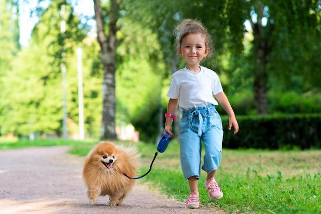 かわいい女の子の子供は彼女のかわいい小さな友達ポメラニアンスピッツの子犬、公園で晴れた夏の日にひもにつないで犬を抱いて歩いています。子供たちは動物、友情の概念が大好きです。