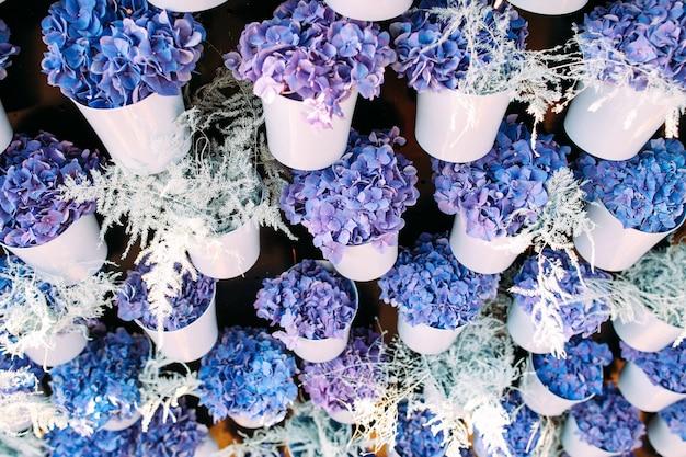 흰색 냄비에 예쁜 제비꽃