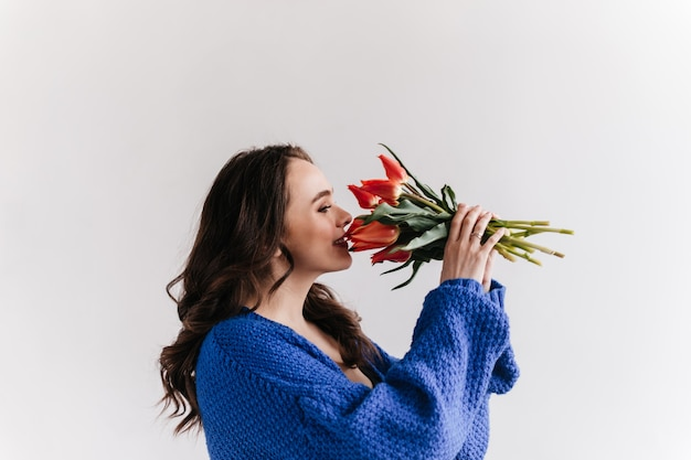 Pretty woman in blue woolen cardigan smells tulips. happy brunette lady holds bouquet on isolated white background.