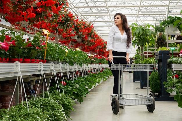 Красивая женщина, выбирая домашние цветы в оранжерее