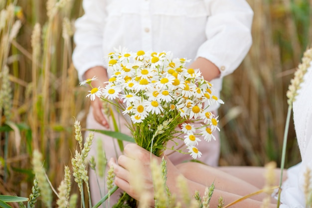カモミールの花を手で保持しているきれいな女性。写真をクローズアップ。