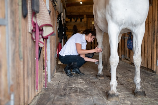 Pretty young sportswoman in skinny jeans and white shirt using brush to clean legs of racehorse