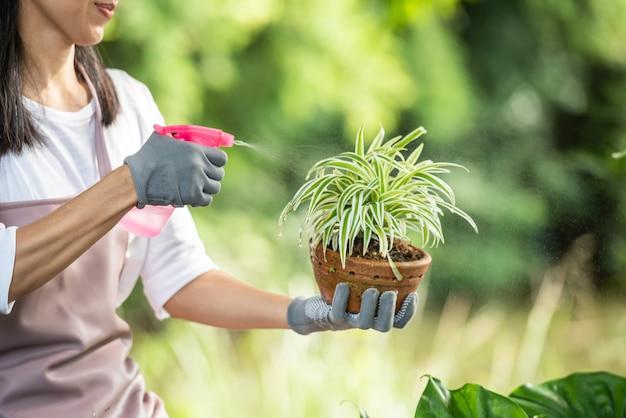 Albero d'innaffiatura della giovane donna graziosa nel giardino al giorno soleggiato di estate. donna giardinaggio fuori nella natura estiva. concetto di agricoltura, giardinaggio, agricoltura e persone.