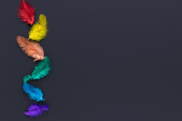 Pride day concept feathers