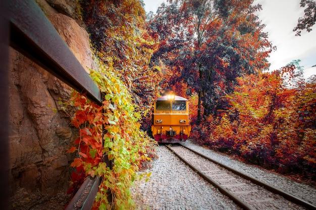 行列列車ディーゼル電気機関車がカーブで山を移動し、美しい秋の森の景色とレールチョッパーを航行