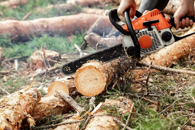 Professional chainsaw close up, logging