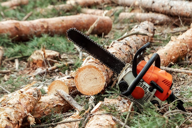 Professional chainsaw close up