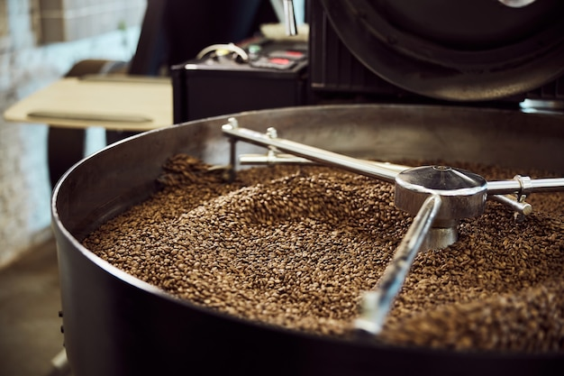 Professional coffee roasting machine with brown coffee beans in stainless steel cooling bin