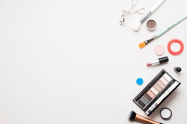 Professional cosmetics and brushes