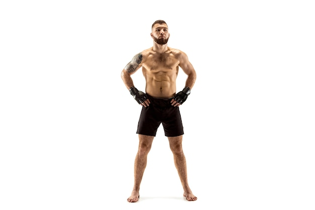 Professional fighter boxing isolated on white studio background