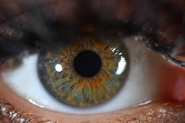 Профессиональная лазерная коррекция зрения, лечение и диагностика заболеваний в клинике.