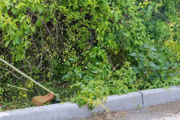 잔디 깎는 기계를 사용하여 길가에서 잔디를 깎는 전문 남자