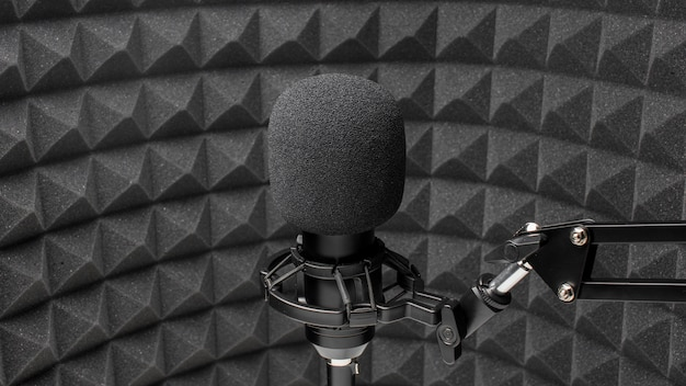 Professional microphone in rounded room