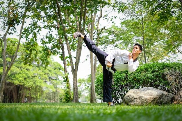여름 공원에서 운동을하는 젊은 아시아 남자 태권도의 전문 초상화