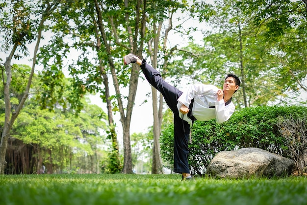 Professional portrait of young asian man taekwondo doing exercise in summer park