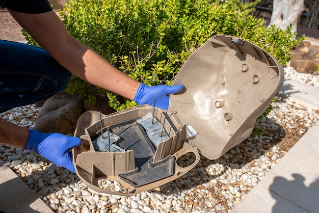 Professional preparing trap for rats, mice, for pest control in a special black box to place the poison.