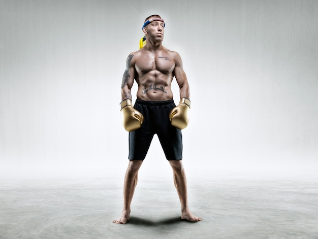 Professional wrestler is standing in a bright room. mixed martial arts, muay thai, kickboxing concept. mixed media Premium Photo