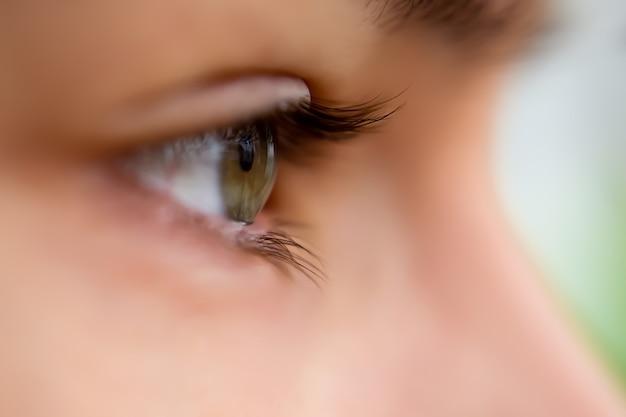 Вид в профиль зеленого глаза, смотрящего прямо